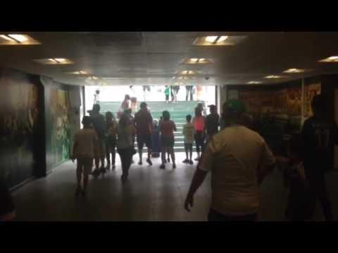 Estadio Palmeiras, São Paulo 2015
