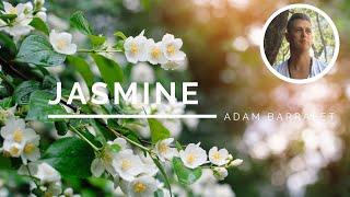 Jasmine - The Oil of Sacred Union
