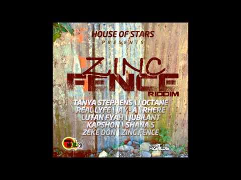 Zinc Fence Riddim ( DJ Fyaman mix )