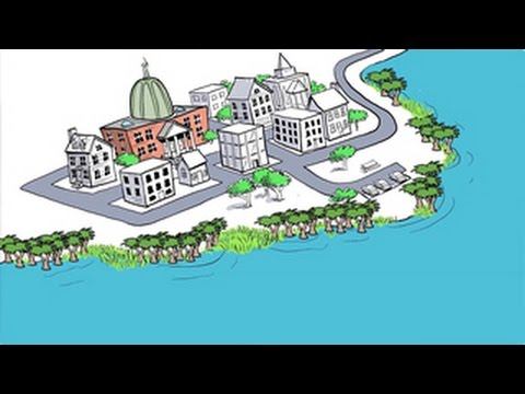Two Minutes on Oceans with Jim Toomey: Adaptation to Sea Level Rise