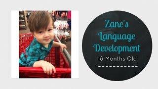 Zane's Language Development || 18 Months Old