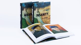 on the verge of insanity van gogh and his illness