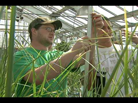 Agriculture Education at Illinois State University