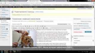 Урок 11. Внедрение правок по оптимизации на сайт. Курс по SEO (Школа интернет-маркетинга EMPO)