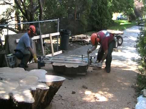 Cutting A 200 Year Old Oak Tree Into Slabs With A 6 Foot