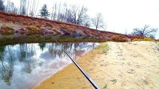 Ради ТАКИХ мест я приезжаю на эти реки Рыбалка на спиннинг на мало речке Ловля щуки осенью