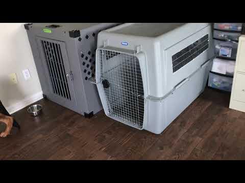 Impact Dog Crate Vs Petmate Crate For German Shepherd.