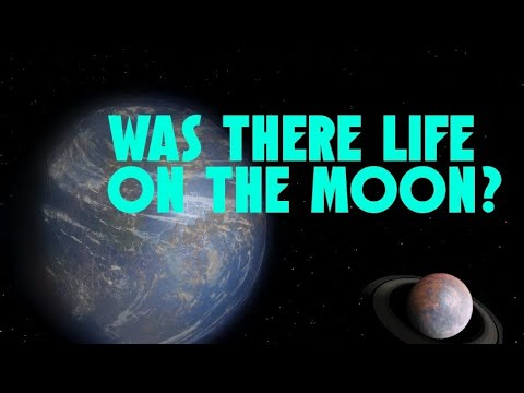 Could the Moon Ever Have Harboured Life?
