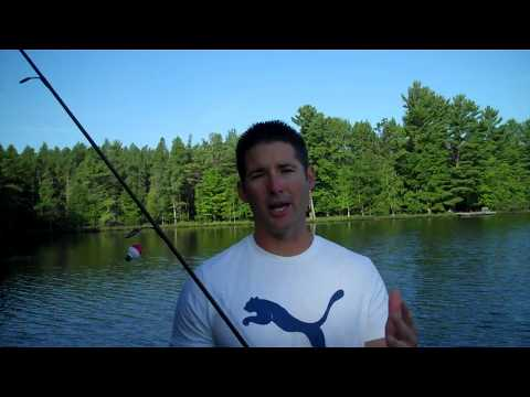 A Beginners Guide To Selecting The Right Crappie Rod…