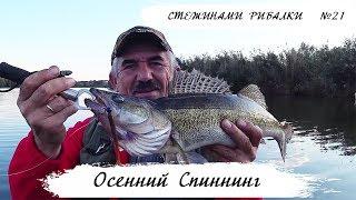 Осенний Спиннинг | Стежинами Рибалки #21
