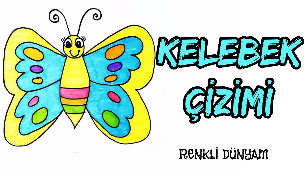Kelebek Nasıl çizilir Kelebek çizimi How To Draw A Butterfly