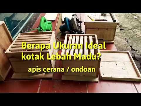 Ukuran Ideal Kotak Budidaya Lebah Madu
