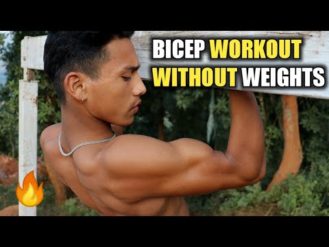 Bicep Workout Without Weights | Bodyweight Bicep Workout | ANISH FITNESS |
