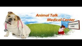 Animal Talk Medical Center   24 hour emergency animal hospital