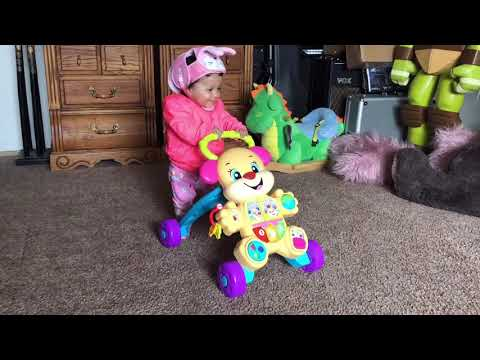 Melody And Walker Toy Walmart Fisher-price