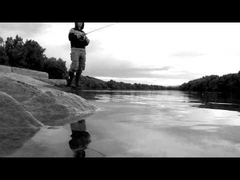 FISHING TIME @ River Danube, Hungary
