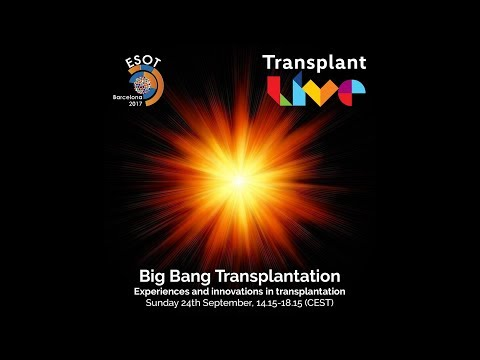 Big Bang Transplantation - Experiences and innovations in tr