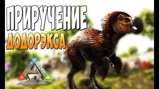 Приручение ДодоРэкса! - Ark Survival Evolved Infinitum #6