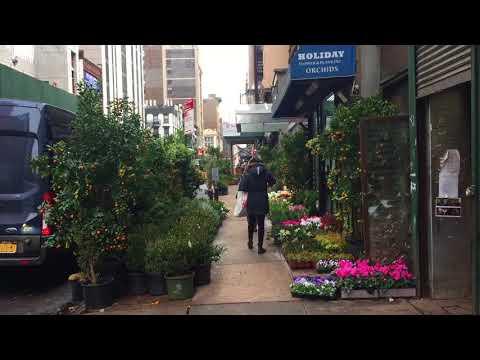 NYC Flower District Winter