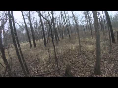A Day in the Woods - Joe Meyer