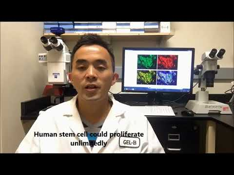 A Safe and cost-effective Stem Cell Approach for Treating Diabetes