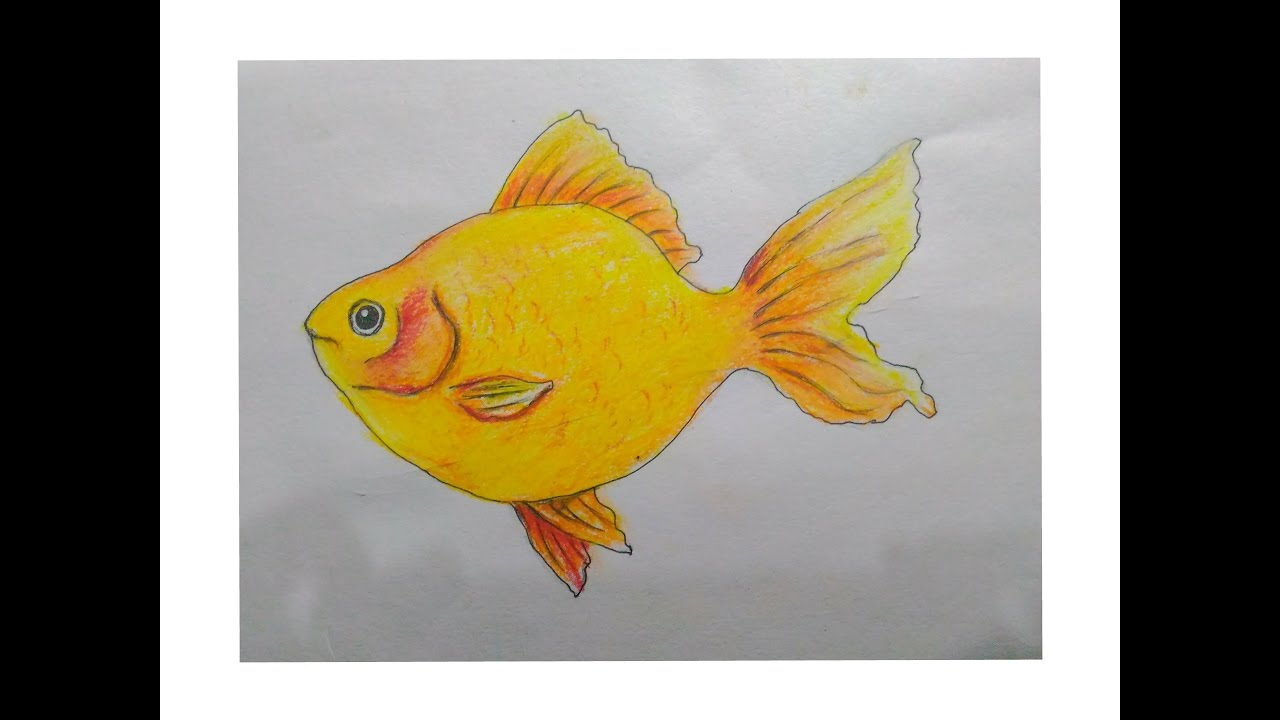 How To Draw A Gold Fish With Oil Pastel Easy Drawing Tutorial