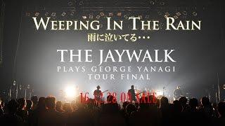こちらの映像はライブDVD『WEEPING IN THE RAIN 雨に泣いてる・・・〜TH...