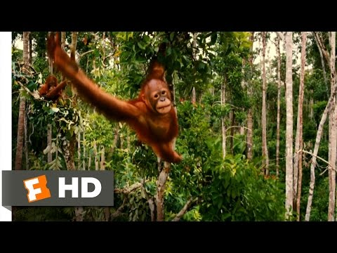 Born to Be Wild  Trailer #1  2011 HD