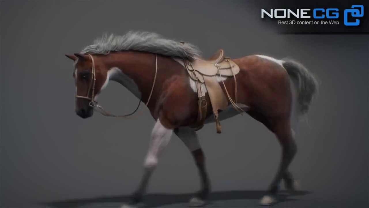 Animated & Rigged 3D Horse Pack v2 for Autodesk Maya Available on  CGriver com! NoneCG Model