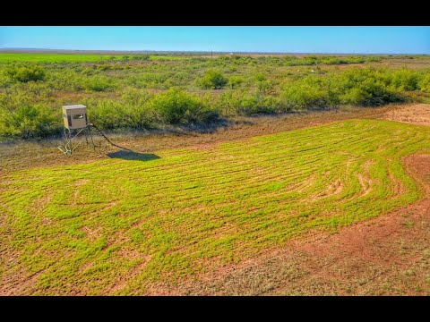 200 Acre Hunting Ranch For Sale In Childress County Texas - $240,000