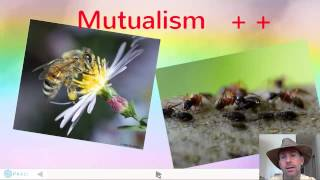 Ecological Interactions thumbnail