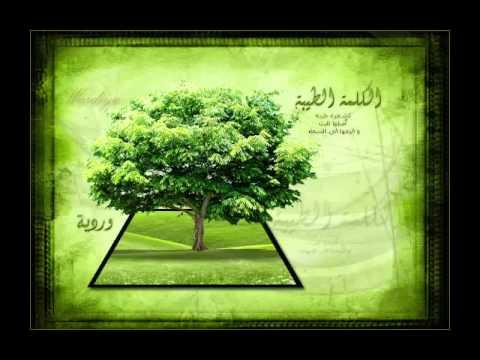 JUZ AMMA ABDIRASHIR SUFI