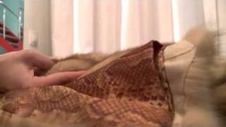 Москва: Скидка 50% на ремонт одежды(, 2011-01-17T18:32:36.000Z)