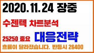 [차트]수젠텍 11월 24일 차트분석.