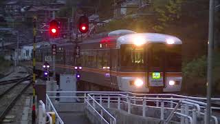 JR東海 373系(F1編成) 特急ワイドビュー伊那路4号 豊橋行き  平岡(2番線)到着