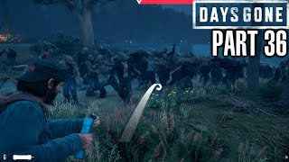 Days Gone How To Deal With A Horde - Gameplay Walkthrough Part 36 - PS4 Review