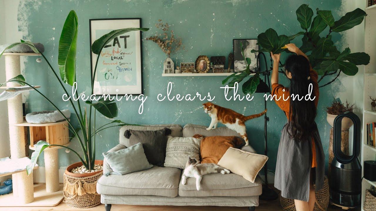 #44 Thoughts About Mental Health While Cleaning The House