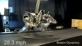 failzoom.com - Cheetah Robot runs 28.3 mph; a bit faster than Usain Bolt