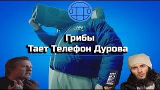 Грибы - Тает Телефон Дурова (Тает Лёд) RYTP