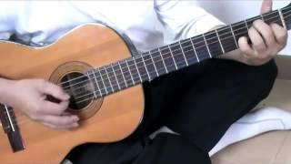 Một Đời Người Một Rừng Cây Guitar cover