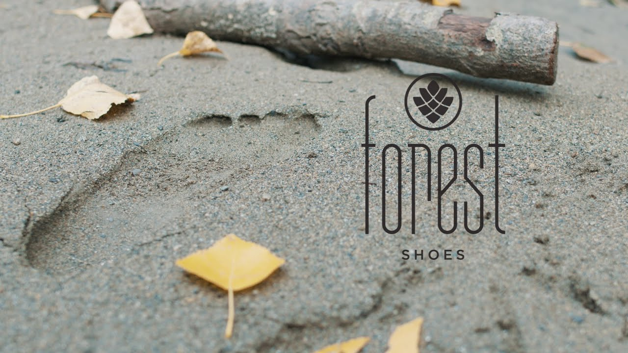 The Forest Shoes