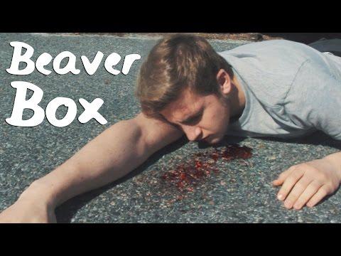 Beaver Box – The Best Phone Case