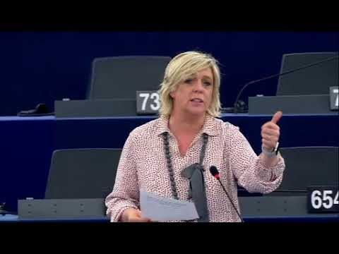 Hilde Vautmans 14 Nov 2018 plenary speech on EU resilience