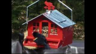 Squirrel Be Gone Country House With Weathervane, Country Style Bird Feeder; Bird Feeding Stations