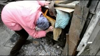 Убить собак и снять с них шкуру могли по приказы хозяйки в Бердске(, 2014-10-22T10:24:42.000Z)