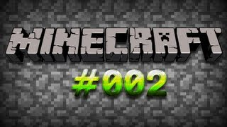 #002 Let's Play Minecraft Multiplayer Picture in Picture [DEUTSCH]