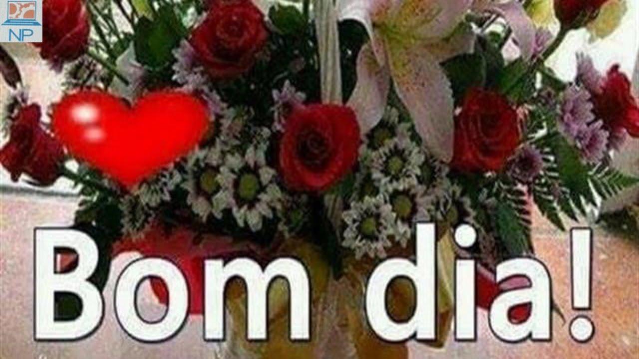 Mensagens Com Flores De Bom Dia: COM VOZ FEMININA