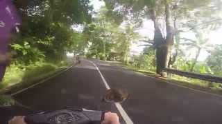 Babes on bikes in Bali