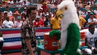 Знаешь что ты сейчас натворил?...отрывок из фильма (Эйс Вентура: Розыск домашних животных)1993