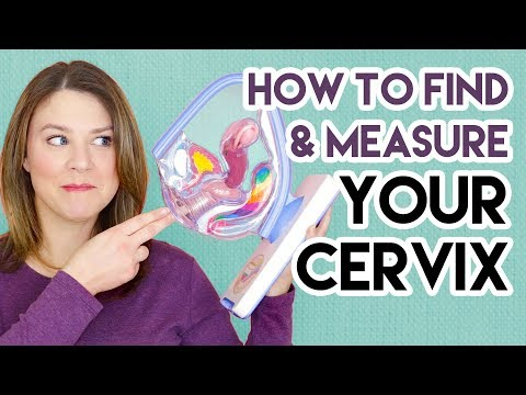 How to Find and Measure Your Cervix